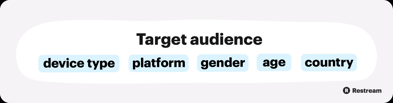 Target Audience portrait